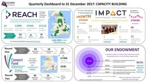 Quarterly infographic Capacity building report for Reach, impact, connect fund and our endowment